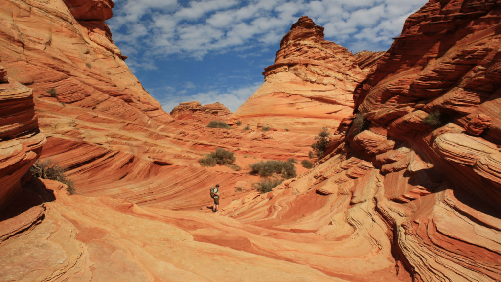 Die Wave der Coyote Buttes South