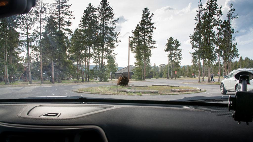 So sah die Szene aus unserem Auto aus