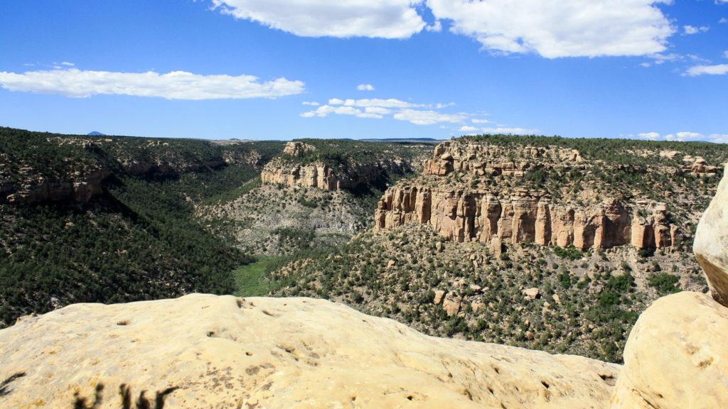 Schöne Aussicht in den Spruce Canyon