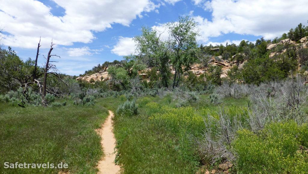 Trail im Mule Canyon