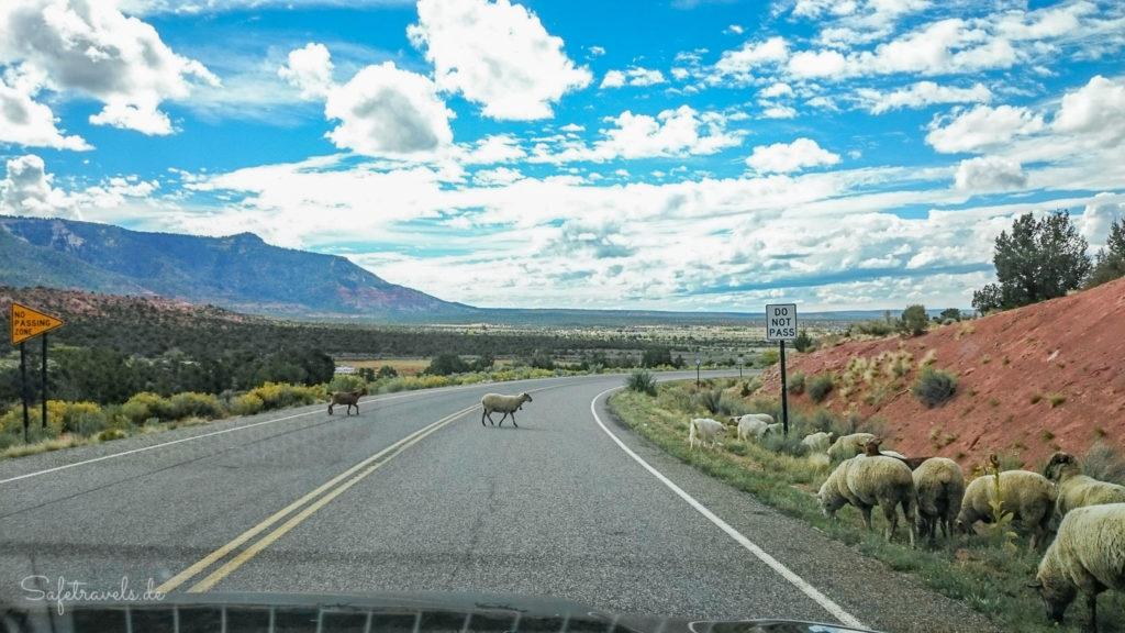 Typischer Verkehr in ländlichen Gegenden