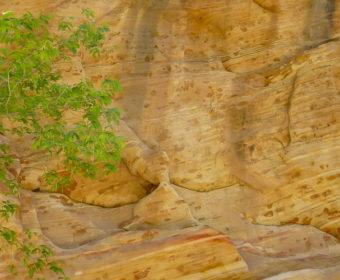 Hidden Canyon Titel Blog