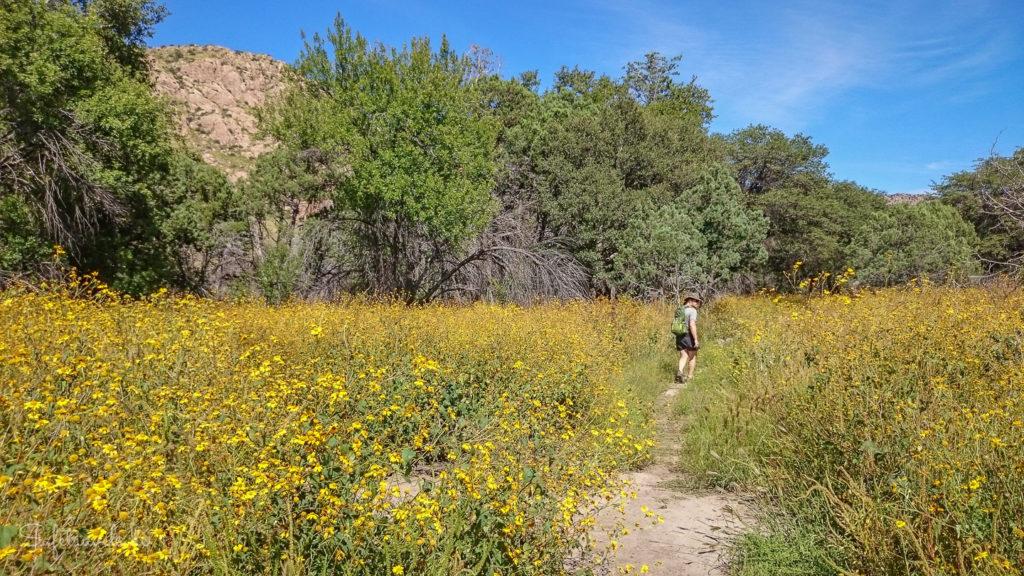 Auf dem Faraway Trail