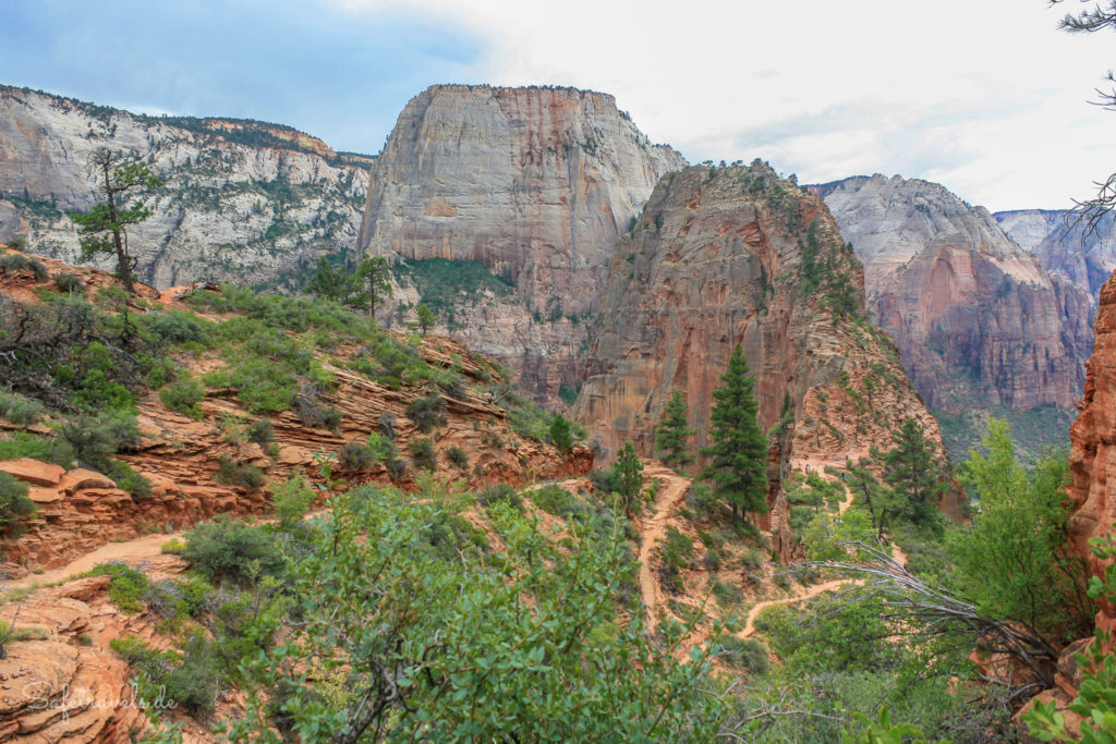 Blick auf Angels Landing und den Great White Throne vom West Rim Trail