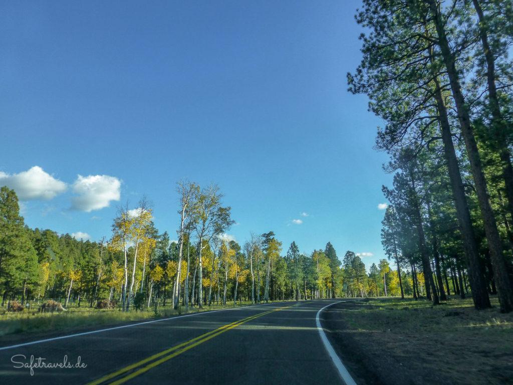 Highway 180 bei Flagstaff