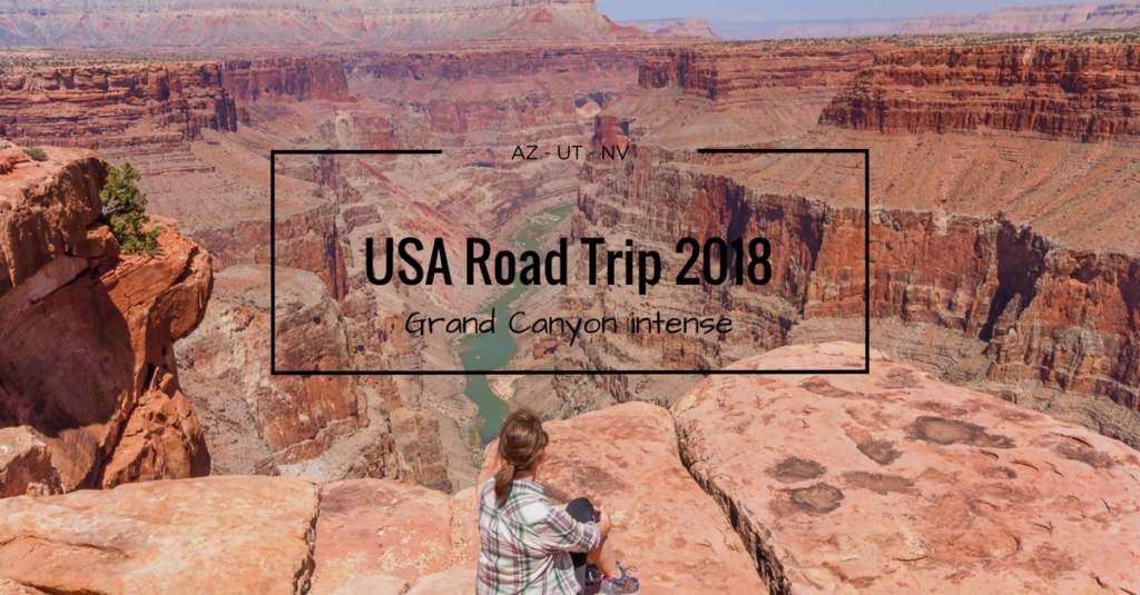 USA 2018 Grand Canyon intense FB