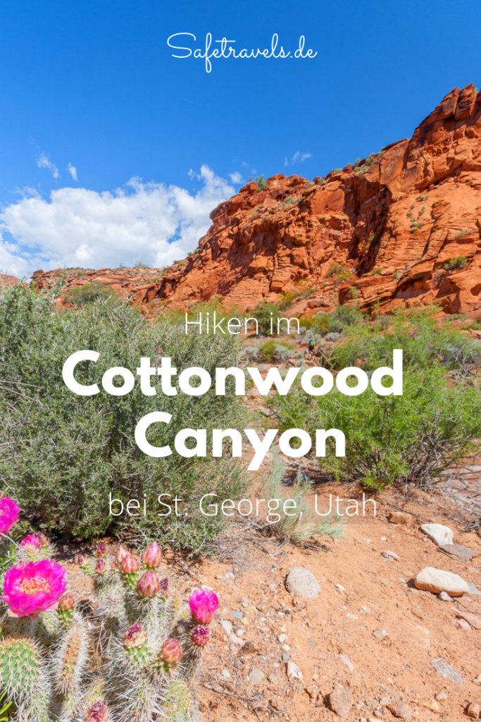 Cottonwood Canyon Trail Pin