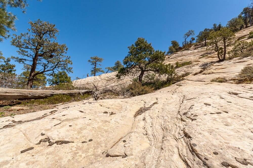 Östliche Sandsteinflanke am East Northgate Peak