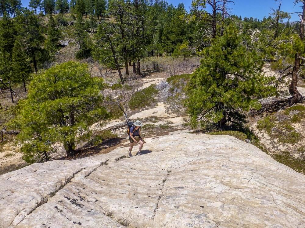 An der Sandsteinflanke des East Northgate Peaks