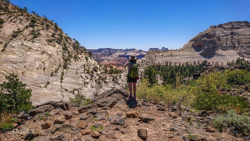 Aussicht auf die Northgate Peaks am Trailende