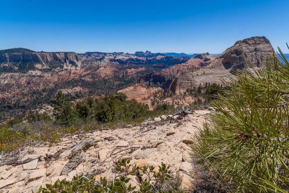 Grandioser Ausblick vom Gipfel des East Northgate Peaks im Zion National Park