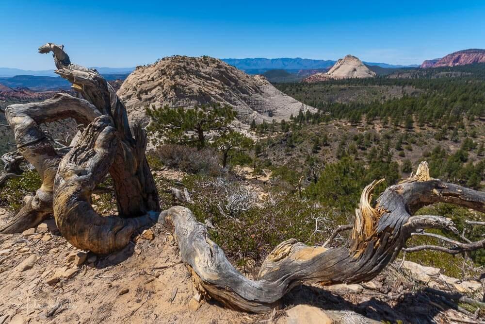 Im Blickfeld West Northgate Peak