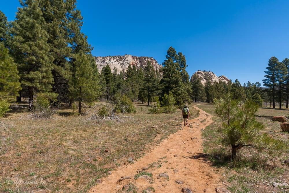 Northgate Peaks Trail im Zion National Park