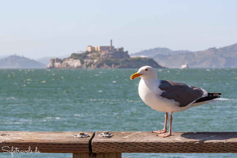 Blick auf Alcatraz vom Pier 39 in San Francisco