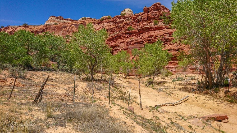 Ein Zaun mitten im Canyon