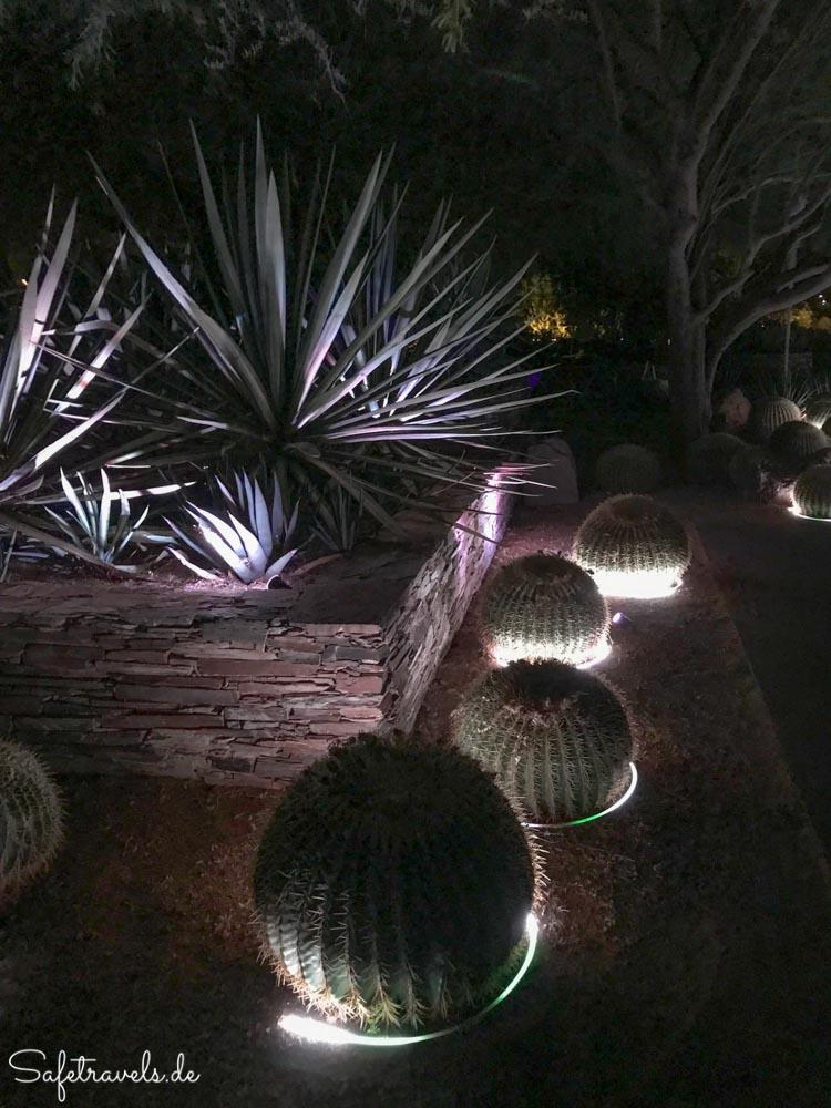 Desert Botanical Garden - Electric Desert - Ottosen Entry Garden