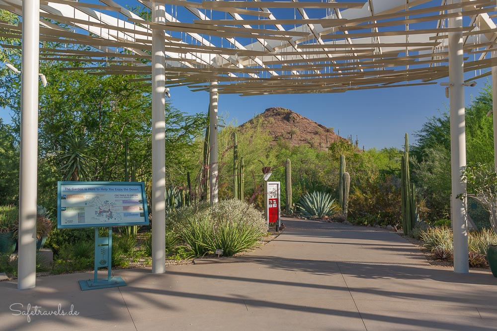 Desert Botanical Garden - am Desert Portal