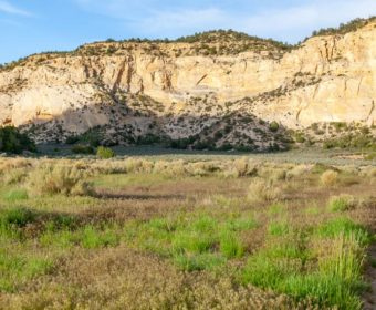 Johnson Canyon Kanab Blog Titel