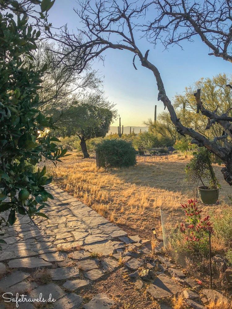 Morgens um 6 Uhr in Tucson