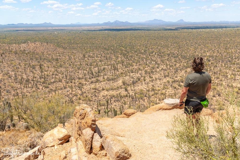 Saguaro National Park - Blick über das Avra Valley