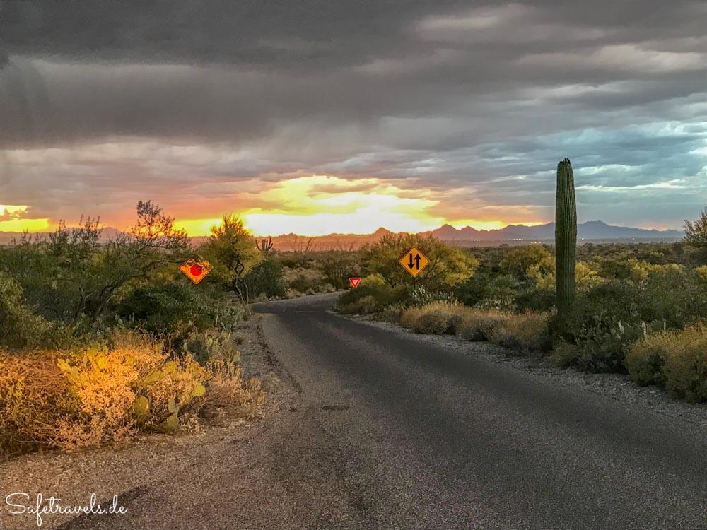 Saguaro National Park - Kurz vor dem Gewitter