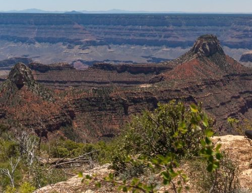 Wandern am Grand Canyon North Rim – Widforss Trail