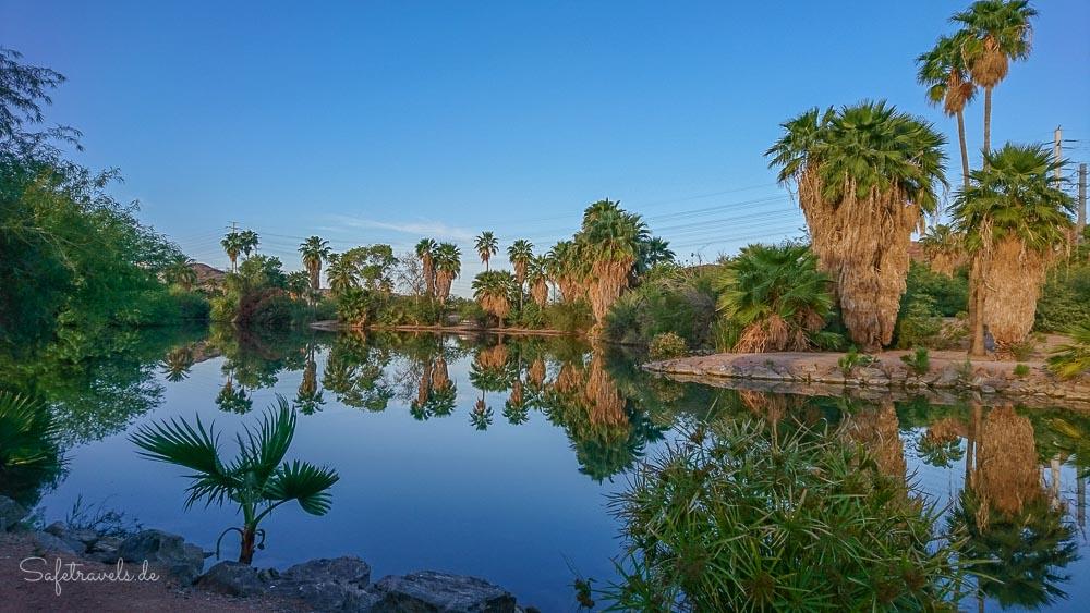 Phoenix - Evelyn Hallman Park und Pond