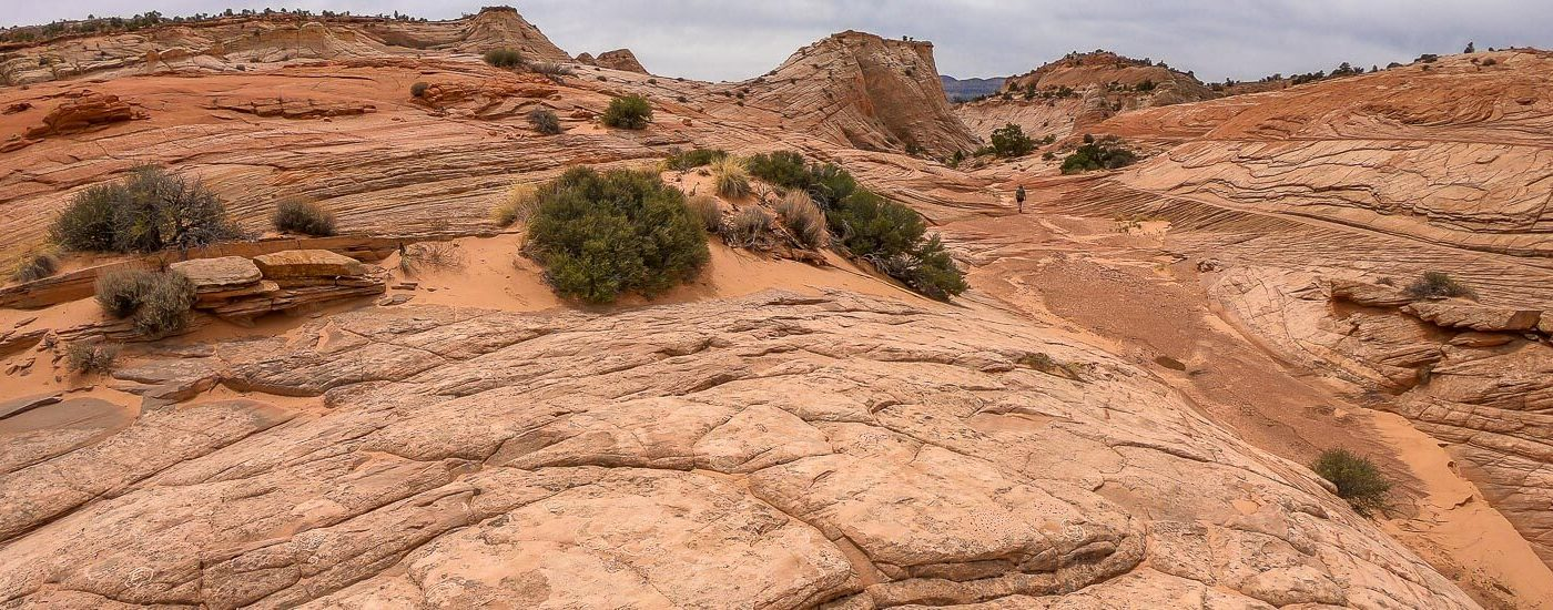 Zebra Slot Unnamed Canyon Blog Titel