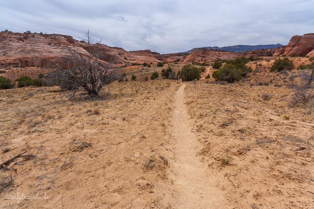 Am Anfang des Zebra Slot Canyon Trail