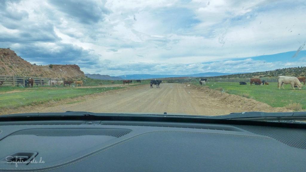 Anfahrt zum Zebra Slot auf der Hole in the Rock Road