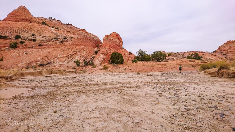 Im Harris Wash auf dem Rückweg vom Unnamed Canyon