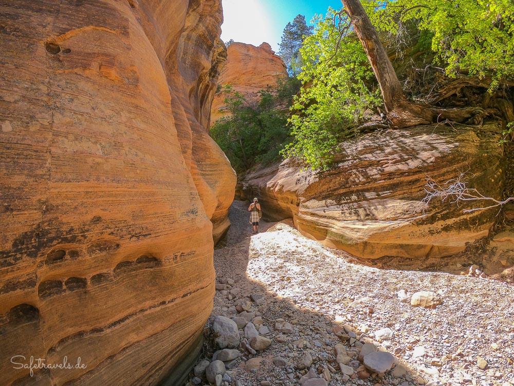 Clear Creek Wanderung im Zion National Park