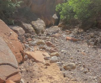 Zion National Park Osteingang Wandern Clear Creek Blog Titel
