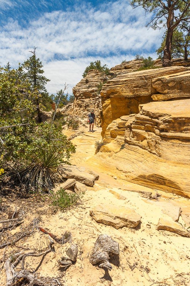 Zion National Park - Wandern auf dem West Rim Trail
