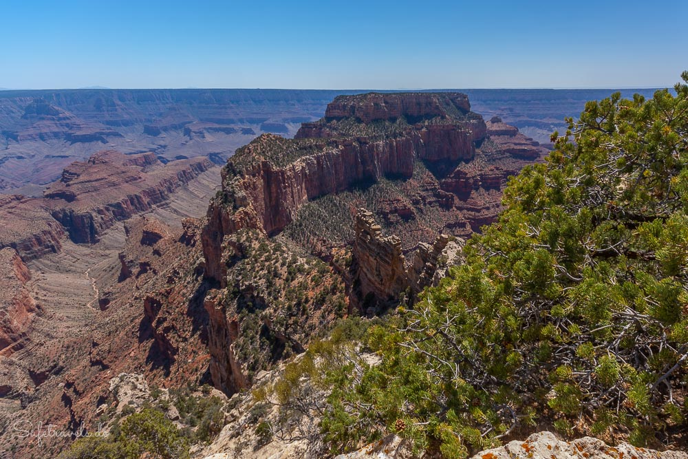 Wotans Throne - Grand Canyon North Rim