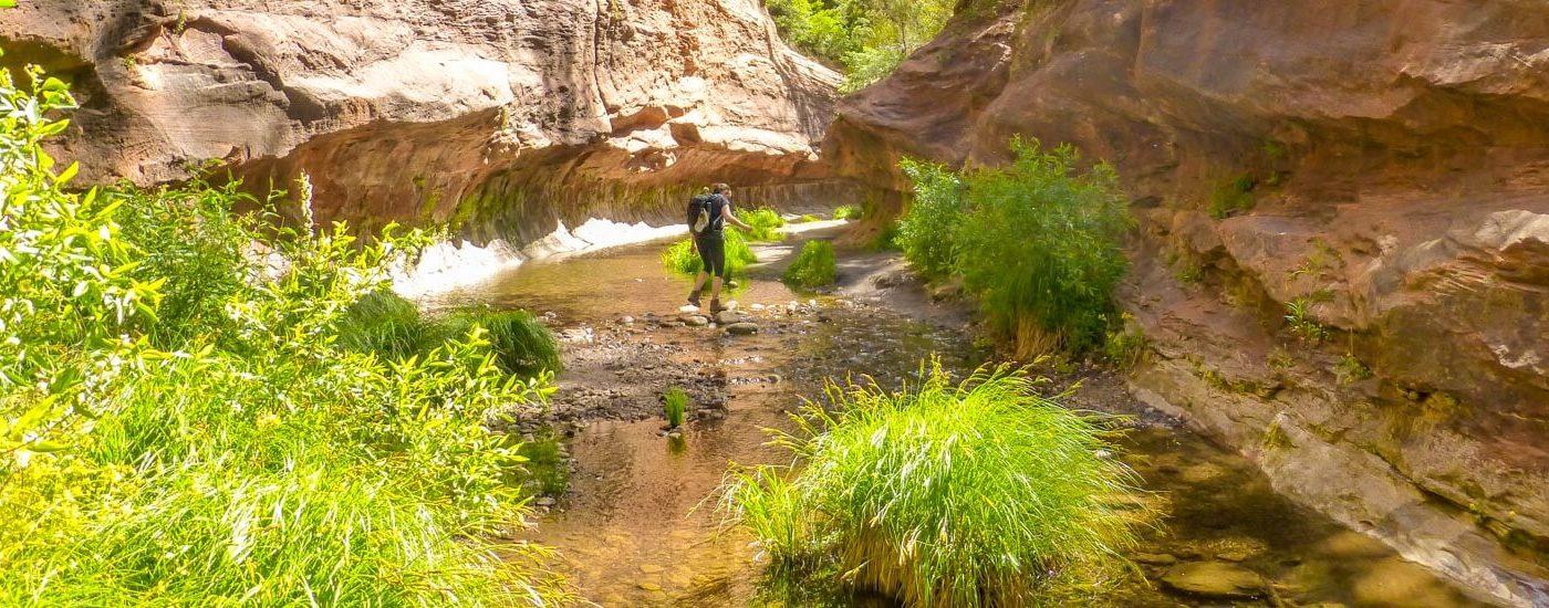 West Fork Oak Creek Sedona Blog Titel