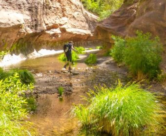 West Fork Oak Creek Sedona Blog Titel