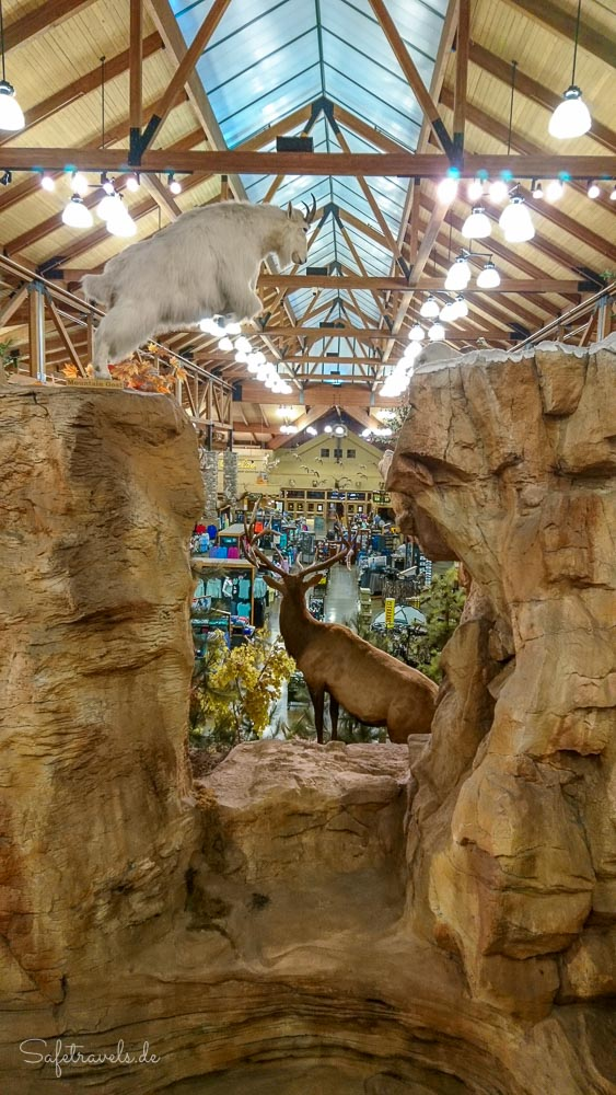Cabelas Store in Goodyear