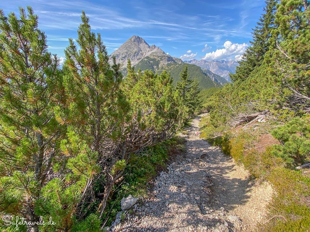 Schmaler Bergweg zum Höllkopf