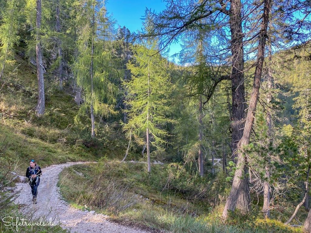 Wanderweg zum Sorapis See - im Wald